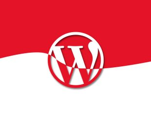 Tema Wordpress Khusus Indonesia ~ Ciuss Creative