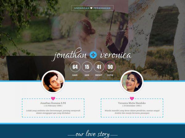 HAPPINESS ~ Undangan Nikah Online (SEWA)