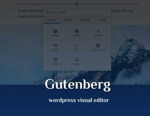 Gutenberg, Inovasi Baru Visual Editor Wordpress
