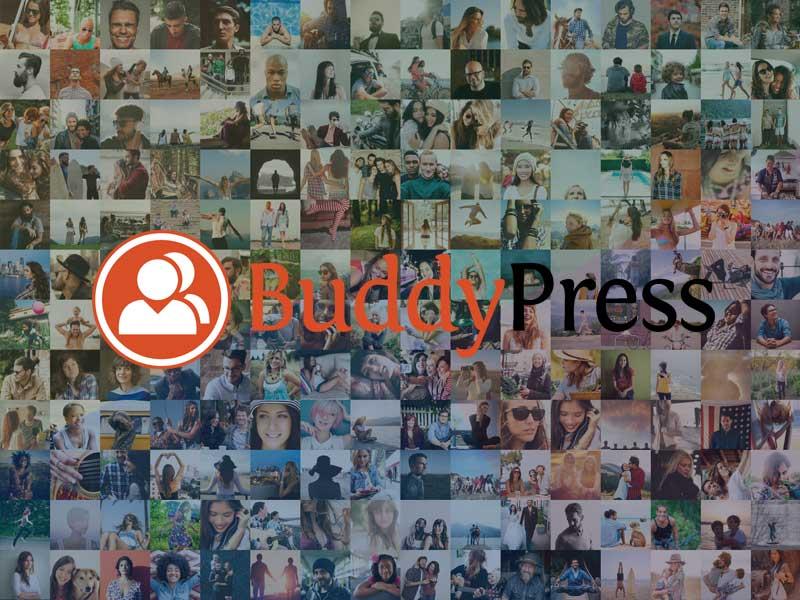 Membuat Web Komunitas? Buddypress Solusinya